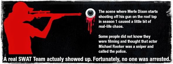 Walking-Dead-Infographic 13