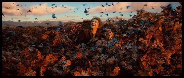 Hobbit 2 (4)
