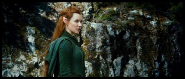 Hobbit 2 (8)