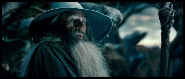 Hobbit 2 (9)