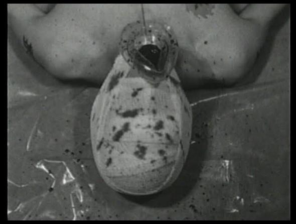 pig 1998 05