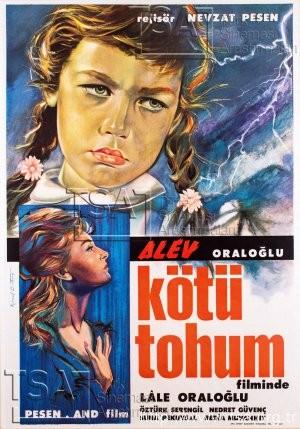 kotu_tohum_1963_width300