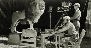 MGM-Lion-5.jpg.pagespeed.ce.fVrJirgaeE