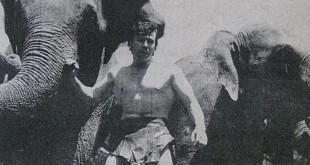 Tarzan Zor Durumda başlık