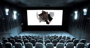 empty-cinema-and-white-screen